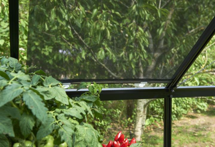 Rolscherm 59 x 190 cm Royal Well
